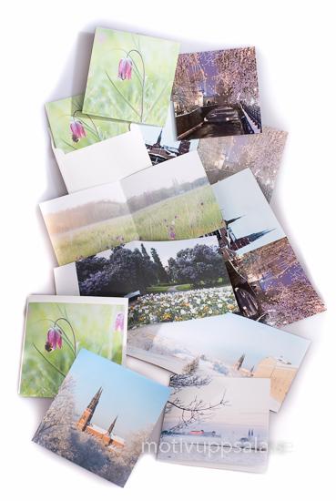 Dubbla kort med kuvert