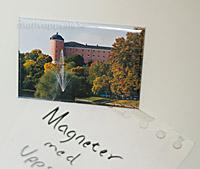 Magnet med Uppsala slott & Svandammen